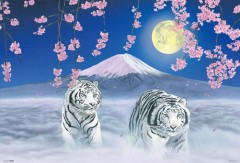 White tigers with Mount Fuji