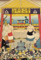 Sumo ceremonial entrance