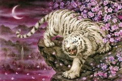 White tiger and cherry