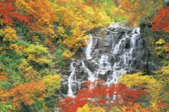 Ninotaki falls in autumn