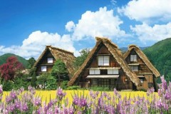 Shirakawa-go houses