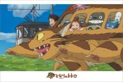 Riding the Catbus