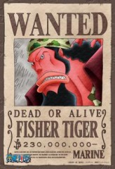 Wanted: Fisher Tiger