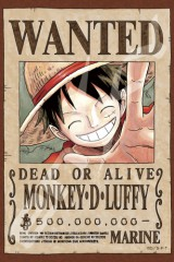 Wanted: Monkey D Luffy